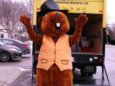 Sutton Sammy Sutton West, Ont.  - mascot - said to live under the water tower - was created by local Home Hardware - during his prediction, Sammy gets dressed up with a top hat and people who attend the event also can wear top hats that are provided  (Photo: Supplied/QMI Agency)
