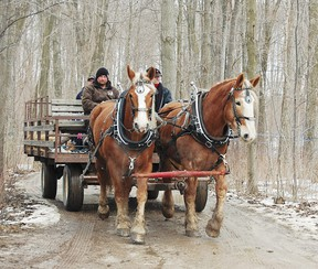 Kinsmen Fanshawe Sugar Bush will be open for Family Day, Feb. 17 from 11am-3pm.