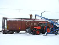 Brad Shura, a worker at the Sexsmith Seed Cleaning Co-op and his co-workers load grain and peas into a rail car that will be shipped to Abbotsford and Vancouver in January. A backlog in getting grain to market is creating concern among Peace Country producers. Randy Vanderveen/Special to Daily Herald-Tribune