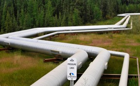 Pipelines at Canadian Natural Resources Limited's (CNRL) Primrose Lake oil sands project are seen near Cold Lake, Alberta.  REUTERS/Dan Riedlhuber