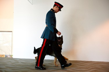 Cst. Ryan Busby and PSD Jagger wait for their time to enter the ceremony during an Edmonton Police Service graduation for Class RTC 127 at Edmonton City Hall in Edmonton, Alta., on Friday, Feb. 28, 2014. Five police service dogs were graduated alongside the class of constables. Ian Kucerak/Edmonton Sun/QMI Agency