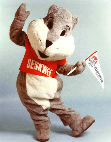 """Seskwee, Toronto's Sesquicentennial the Squirrel mascot, made hundreds of guest appearances in local schools and hospitals throughout the city's 150th anniversary year. He (or is it she?) also visited the children in another Toronto, the one in Ohio. As the 150th anniversary year came to a close """"Seskwee"""" was last seen hunting for berries and nuts in the thousands of trees in High Park. Thirty years later he would be more than welcome at City Hall where there are lots of nuts. This photo appears courtesy Russ Horner who knew """"Seskwee"""" better than anybody."""
