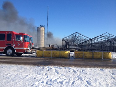 Rosa Flora Ltd. in Dunnville was destroyed by a massive fire early Thursday morning. Melissa Mangelsen, Tribune Staff