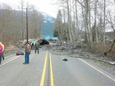 Officials survey a large mudslide in this handout photo provided by the Washington State Police near Oso, Washington March 22, 2014. The mudslide pushed debris and at least one house onto Highway 530 near Oso Saturday morning according to local news reports.  Search and rescue crews were responding to the scene.  REUTERS/Washington State Police/Handout via Reuters