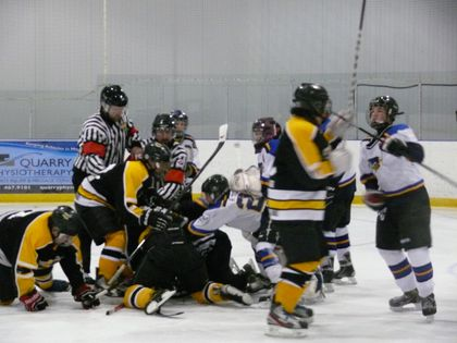 minor hockey fight