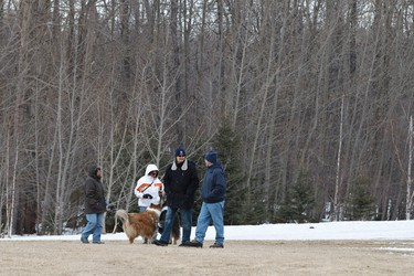 Pet owners walk their dogs at Jackie Parker Park in Edmonton, Alta., on Saturday, April 5, 2014. The City of Edmonton is looking to have more pet owners license their pets, both dogs and cats. According to the City, only 35 per cent of cats and 65 per cent of dogs in the city are licensed. Ian Kucerak/Edmonton Sun/QMI Agency