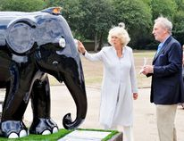 "Camilla, Duchess of Cornwall, escorted by her brother Mark Shand, looks at an elephant sculpture designed in the style of a London taxi during a visit to the Elephant Parade exhibition at Chelsea Hospital Gardens in London on June 24, 2010. (<A HREF=""http://www.wenn.com"" TARGET=""newwindow"">WENN.COM</a>)"