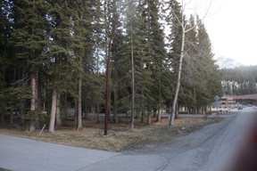 Two heavily treed Parks Canada lots on Marmot Crescent have attracted low-ball purchase offers totalling $105,000 from the Town of Banff, which wants them for new housing units.Dave Husdal/ For the Crag