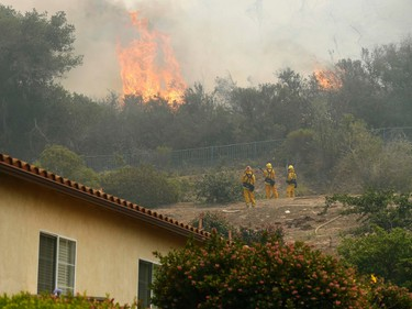 Firefighters protect the backyard of a home from the Cocos Fire in San Marcos, California May 15, 2014.   REUTERS/Mike Blake