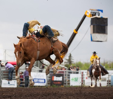 Ryley Gilbertson, of Chauvin, Alberta, wins the Bare Back Riding event with a 76 point ride at the Rainmaker Rodeo in St. Albert, Alberta on May 25, 2014.  CHAD STEEVES/EDMONTON SUN /QMI AGENCY