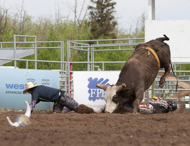 Mark Doerksen of Fort Vermilion, Alberta, has a close call after his final round of Bull Riding at the Rainmaker Rodeo in St. Albert, Alberta on May 25, 2014.  CHAD STEEVES/EDMONTON SUN /QMI AGENCY