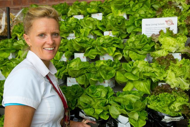 Ingrid Willemsen, of Sunripe Market, shows off their new Living Salads, that can stay alive on your counter for days. The lettuce can be treated like a house plant, providing fresh, crisp greens. (Mike Hensen/The London Free Press)