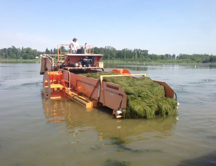 A weed harvester combine clears the water at Telford Lake for the Leduc Boat Club. SUBMITTED