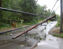 Trees and power lines came down near Grand Bend as a severe storm moved Sunday evening through Lambton Shores. Crews were at work Monday cleaning up the damage and working to restore electricity to more than 4,000 homes. (LYNDA HILLMAN-RAPLEY, QMI Agency)