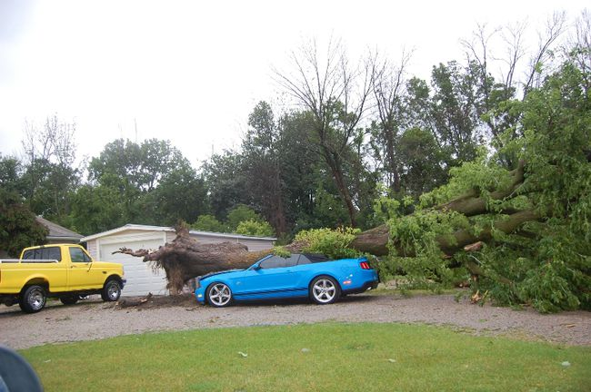 Trees and power lines came down near Grand Bend as a severe storm moved through Lambton Shores on Sunday evening. (LYNDA HILLMAN-RAPLEY/QMI Agency)