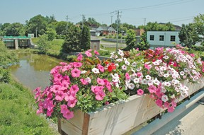 Two flower boxes along the Huron Road bridge in Mitchell were damaged recently. The flowers were completely ripped out and thrown into the river below. The act of vandalism was brought to the attention of the municipality, the Tourism and Beautification Committee and the Police Services Board and have since been replaced. KRISTINE JEAN/MITCHELL ADVOCATE