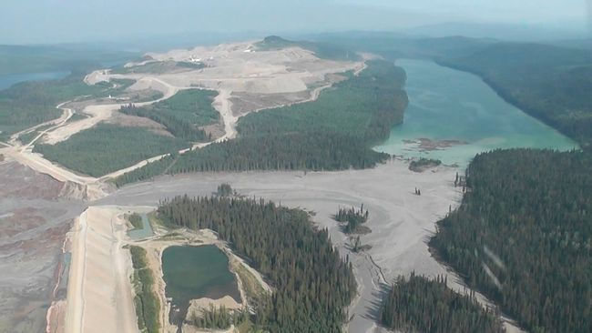 The results of a tailing pond breach  at Imperial Metals Corp's gold and copper mine at Mount Polley in central British Columbia.  REUTERS/Cariboo Regional District/Handout