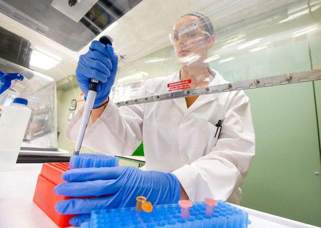 Third year environmental technologies student Tara McCowan sets up a PCR reaction while working in a lab at Fanshawe College in London, Ontario on Monday August 11, 2014 (QMI Agency file photo).