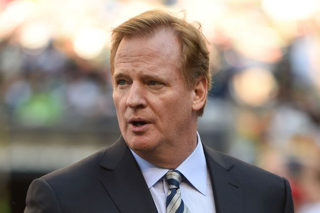 NFL commissioner Roger Goodell has had calls for his resignation after video of Ray Rice assaulting his fiancee was released this week. (USA TODAY SPORTS)