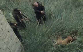 Officers surround a cougar that took up residence outside the South Health Campus in Calgary on Thursday, Sept. 18, 2014. The animal was shot dead. (Video posted to YouTube by Olivier Graham)