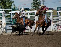 The Zur sisters, Britnie (left) and Abby (right) compete in the team roping contest at their hometown high school rodeo on Saturday, Sept. 13, 2014. John Stoesser photos/QMI Agency.