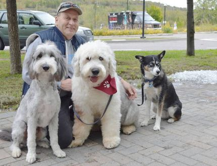 Jim Moodie/The Sudbury Star Bob Savoie poses with his dogs Harley the bearded collie, Fritz the English sheepdog and Tao the Australian cattle dog during the SPCA Friends for Life! Walk on Sunday at College Boreal. Savoie is a member of the pet therapy group, bringing his furry friends to hospitals and nursing homes to brighten the lives of patients and residents.