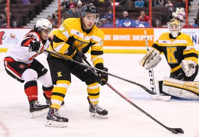 Warren Steele, a veteran of more than 200 OHL games with the Kingston Frontenacs, will play for the Queen's Golden Gaels this season. (QMI Agency)
