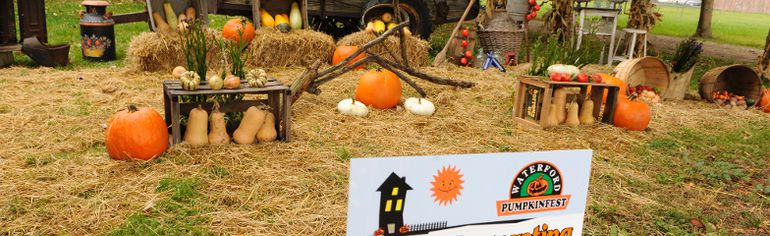 The winners of the 2014 Waterford Pumpkinfest house-decorating contest have been announced. First place goes to Darlene and Paul Laevens of 260 Church St. West; second goes to Paul and Jill DePauw, 271 Main St. South; and third goes to Laurie Ball, 95 St. James St. South. DANIEL R. PEARCE/SIMCOE REFORMER