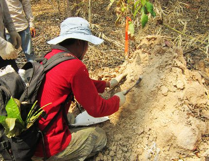 An Angkor Gold employee doing early exploration, in search of gold sediment - in this case from a termite mound. Termites help with exploration by bringing up samples of everything they encounter down to a depth as deep as 60 metres (or to the water table, whichever is less). Each sample is identified via GPS for location and then analyzed for mineral content. Delayne Weeks, vice-president of Corporate Social Responsibility for Angkor, will present to the Intergovernmental Forum on Mining, Minerals, Metals and Sustainable Development in Geneva; an annual conference sponsored by the United Nations Commission on Trade Development, from Oct. 20-23. Supplied.
