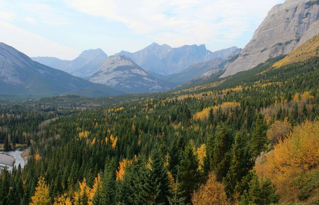 Fall foliage, early morning view from the Delta Kananaskis, Alberta by Ange Poletto. Theme: Mountains (Oct. 2, 2014)