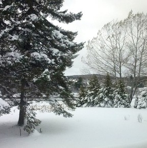 Atlantic Canada experienced its first significant snowstorm of the season, Tobique First Nation is pictured in this Nov. 3, 2014 photo. (Photo courtesy of Rocky bear/File photo)