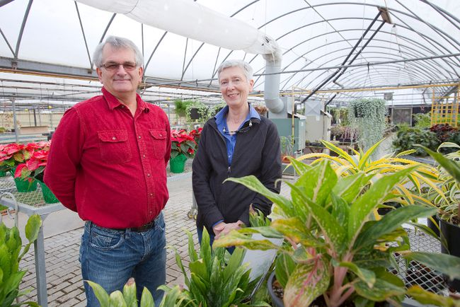 Garden Centre: Countdown To Closing On At Van Horik's