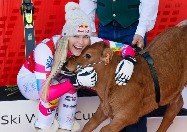 Lindsey Vonn of the U.S. poses for photographers with a cow she won as a prize after finishing first in the women's World Cup Downhill skiing race in Val d'Isere, French Alps, December 20, 2014.  REUTERS/Robert Pratta