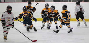 The Atom Minor AAA Ottawa Sting took on the North Jersey Avalanche during Capital Cup action at Jim Durrell Recreation Centre in Ottawa Monday Dec 29,  2014. North Jersey celebrates their goal against the Sting during second period action Monday. The Avalanche defeated the Sting 5-3.  Tony Caldwell/Ottawa Sun/QMI Agency