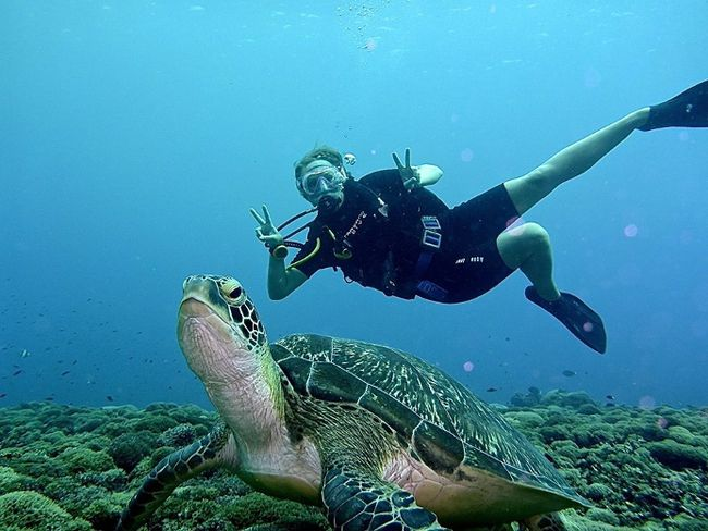 A photo of myself diving near Gili Trawangan, part of the Gili Islands in Indonesia, April 2014. Had to stop for a quick #selfie with a turtle! By Julie Easterby. Theme: Animals (Dec. 4, 2014)