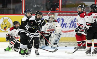 The 16th annual Bell Capital Cup officially wrapped up Friday with the final few championship games played at the Canadian Tire Centre. In one the remaining finals, the Canterbury Black Knights captured the Atom House B crown by defeating the Stittsville Sting 2-1. (Chris Hofley/Ottawa Sun)