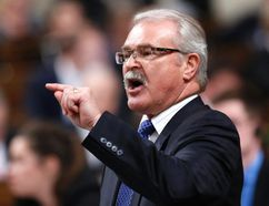 Canada's Agriculture Minister Gerry Ritz speaks during Question Period in the House of Commons on Parliament Hill in Ottawa December 4, 2014. REUTERS/Chris Wattie