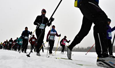 Cross Country Skiers compete in the Classic Style 27km race during the Gatineau Loppet in Gatineau, Que., on Saturday, February 14, 2015. Matthew Usherwood/Ottawa Sun