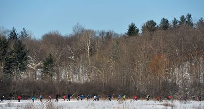Cross Country Skiers compete in the Freestyle races during the Gatineau Loppet in Gatineau, Que., on Sunday, February 15, 2015. Matthew Usherwood/Ottawa Sun