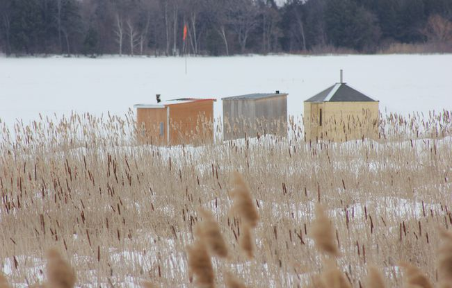 <p>The ice huts sit empty and waiting to be taken off the ice at Hoople Creek in Ingleside on Tuesday, March 3. The ice fishing season was officially over as of March 1.</p><p>LOIS ANN BAKER/CORNWALL STANDARD-FREEHOLDER/QMI AGENCY