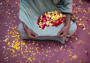 A widow holds petals in her saree as she attends the Holi celebrations organised by non-governmental organisation Sulabh International at a widows' ashram at Vrindavan in the northern Indian state of Uttar Pradesh March 6, 2015. Traditionally in Hindu culture, widows are expected to renounce earthly pleasure so they do not celebrate Holi. But women at the shelter for widows, who have been abandoned by their families, celebrated the festival by throwing flowers and coloured powder.  REUTERS/Ahmad Masood