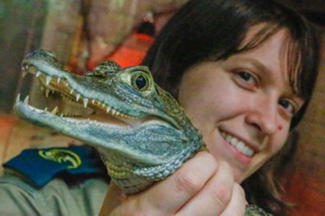 Reptilia head zookeeper Cheryl Sheridan, 26, with the High Park caiman at the facility on Rutherford Rd. in Vaughan on Monday March 9, 2015. (Dave Thomas/Toronto Sun)