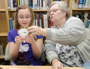 Elaine Kolomeitz from the Cochrane Horticultural Society demonstrates the different sizes and shapes of seeds during Saturday's Garden Magic workshop held at the Cochrane Public Library.