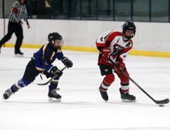 Owen Listhaeghe, right, of the Sexsmith Vipers, skates the puck up ice against the Provost Blades at the Hockey Alberta Peewee B Provincial Championships at the Sexsmith Arena on Friday. The Blades won 7-1. Logan Clow/Daily Herald-Tribune