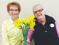 Volunteers and cancer survivors Val Sawatzky and Kathy Wall were proud to sell daffodils in the Altona Mall last week to raise funds for a cure. (LORI PENNER/Red River Valley Echo)