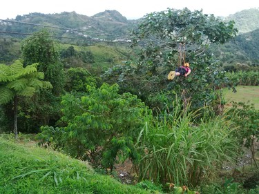 Viviana Vargas of Puerto Rico Tourism fearlessly glides along The Beast of ToroVerde's ziplining tour at Orocovis. At 4745 feet, it's the longest cable in the Americas, and at a height of 853 feet it's said to be the second highest in the world. Barbara Taylor/QMI Agency