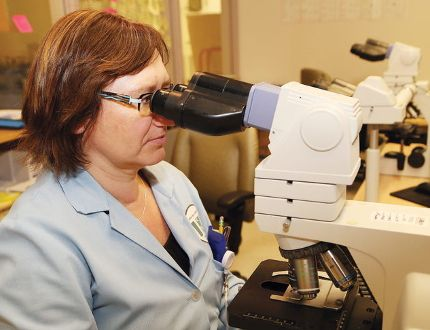 Medical laboratory technologist Ela Hanson examines blood cells in the hematology department. John Lappa/Sudbury Star