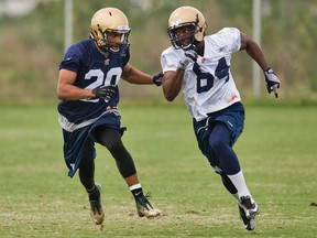 Winnipeg Blue Bombers defensive back Johnny Adams covers receiver Justin Wilson during a CFL football workout at mini-camp in Bradenton, Fla. on April 20, 2015. (Steven Nesius/Postmedia Network)