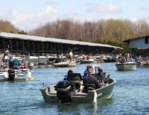A traffic jam of boats heading out for the big catch in the Orillia Perch Festival. (Photo by Kim Goggins, Ontario's Lake Country)