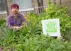 Narcise Datura, seen standing in his boulevard garden at his King St. home in London, is a founding member of Food Not Lawns, an organization that will turn boulevards into edible gardens Saturday. (CRAIG GLOVER, The London Free Press)